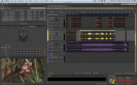 Screenshot Adobe Audition Windows XP